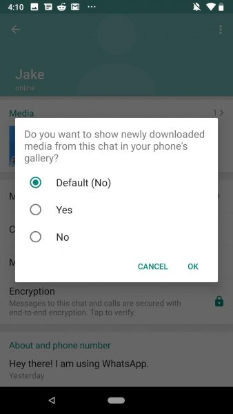 how to hide whatsapp photos and videos from gallery android