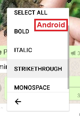Whatsapp bold italics upside down crossed out underline write text